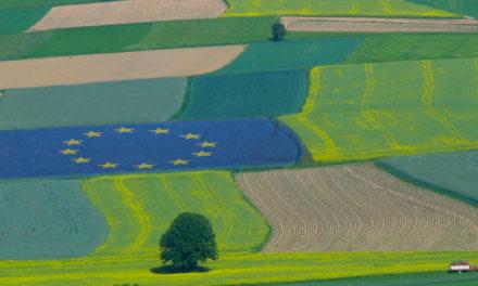 Politica Agricola Comune: pagamenti diretti