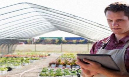 Regione Lazio: investimenti nelle aziende agricole finalizzati al miglioramento delle prestazioni