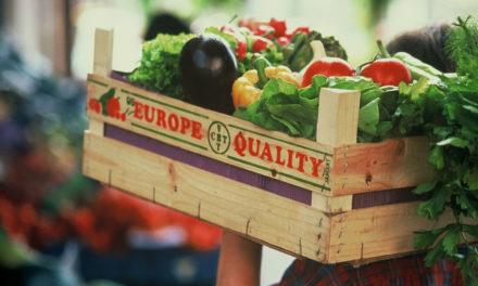 Regione Basilicata: presentato bando per promuovere prodotti agricoli