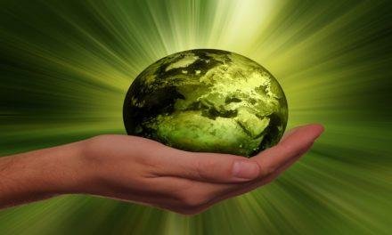 Rapporto ASVIS: ombre e luci sullo sviluppo sostenibile