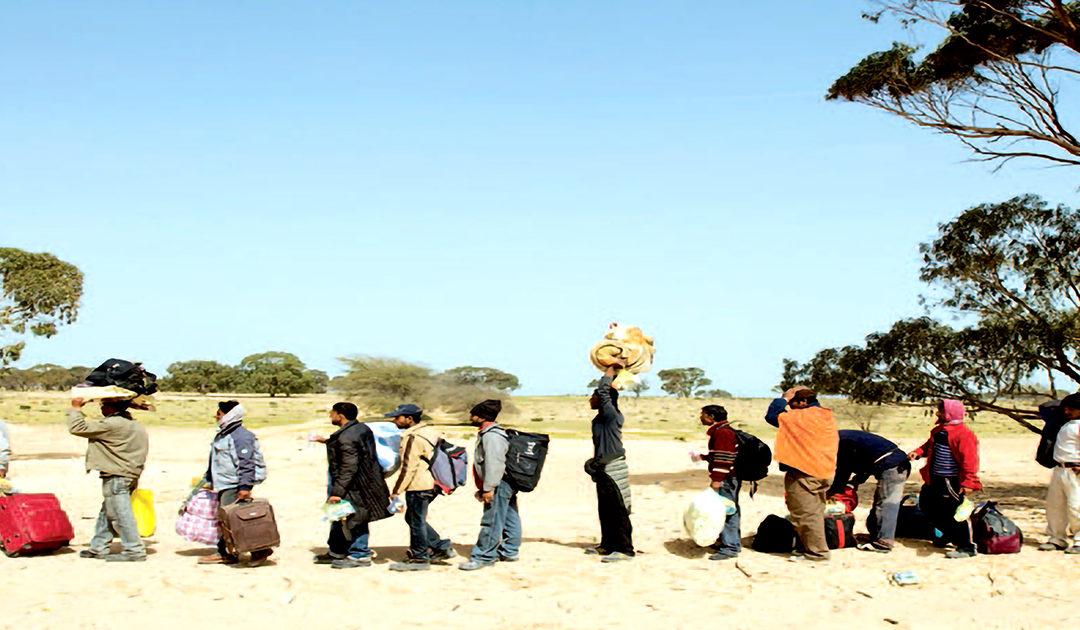 Migrazioni: tra falso mito e realtà
