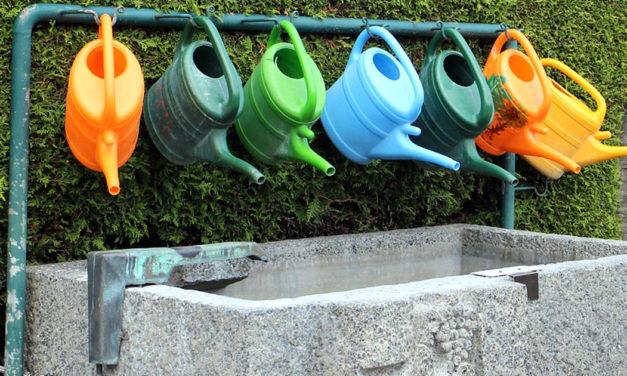 Il Consiglio Europeo approva l'accordo provvisorio sul riutilizzo dell'acqua per l'irrigazione agricola