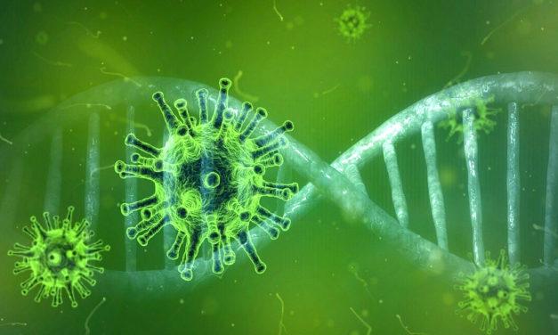 La seconda pandemia del secolo: il coronavirus