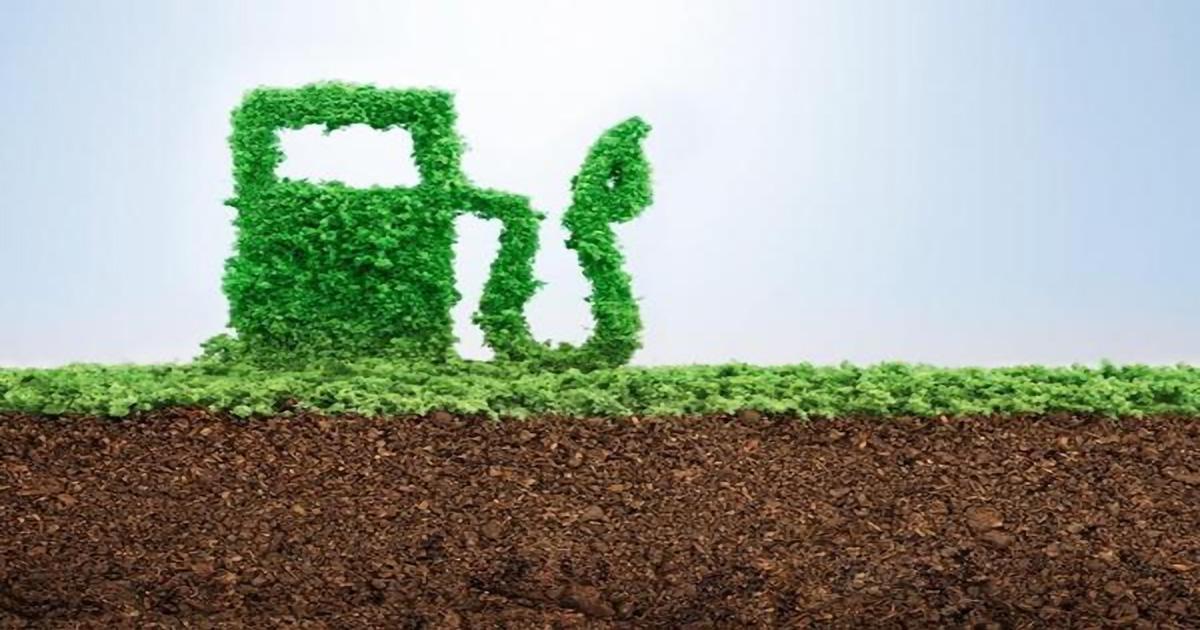La lunga strada verso la multifunzionalità dell'agricoltura. I Biocarburanti avanzati