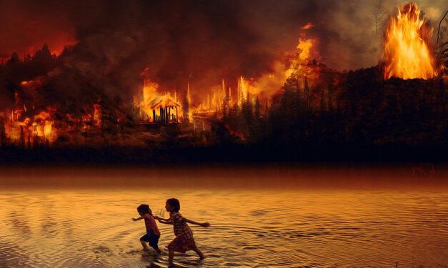 2020, l'anno di fuoco
