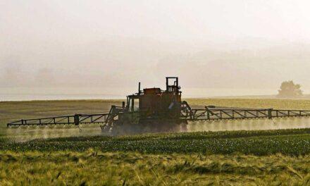 Da Iniziativa dei Cittadini Europei a regolamento: trasparenza e sostenibilità dell'analisi del rischio nella filiera alimentare